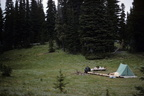 Mt. Rainier campsite 1770